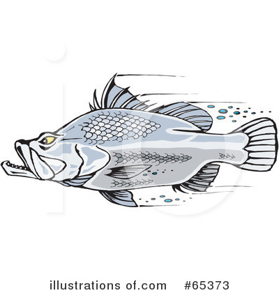 Barramundi Clipart #65373 by Dennis Holmes Designs