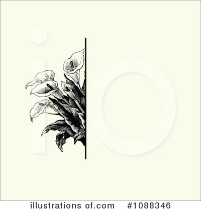 Floral Invite Clipart #1088346 by BestVector