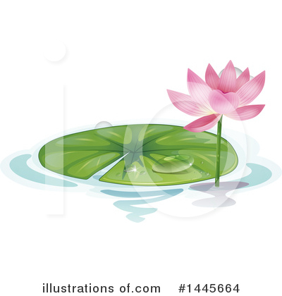 Water Lily Clipart #1445664 by Graphics RF