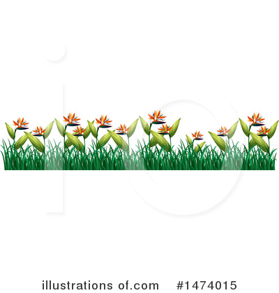Bird Of Paradise Clipart #1474015 by Graphics RF