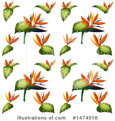 Bird Of Paradise Clipart #1474016 by Graphics RF