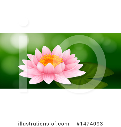 Water Lily Clipart #1474093 by Graphics RF