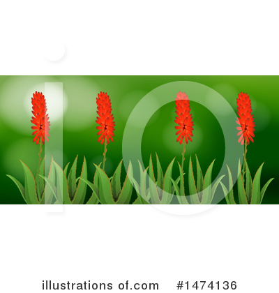 Aloe Clipart #1474136 by Graphics RF