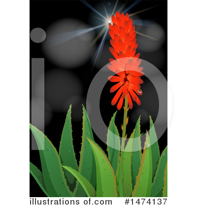 Aloe Clipart #1474137 by Graphics RF