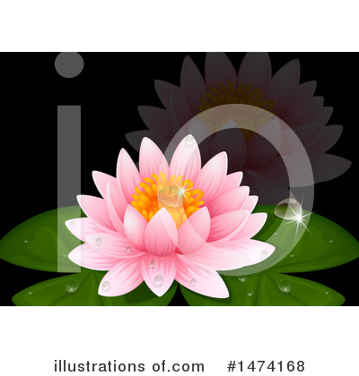 Water Lily Clipart #1474168 by Graphics RF