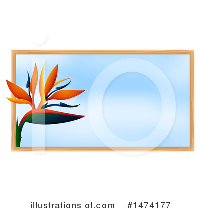 Bird Of Paradise Clipart #1474177 by Graphics RF