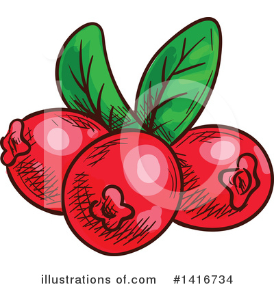 Coffee Berry Clipart #1416734 by Vector Tradition SM