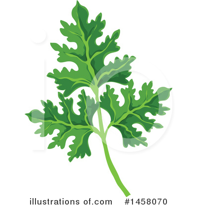 Parsley Clipart #1458070 by Vector Tradition SM