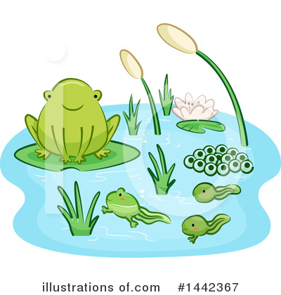 Royalty-Free (RF) Frog Clipart Illustration by BNP Design Studio - Stock Sample #1442367
