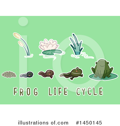 Frog Clipart #1450145 by BNP Design Studio