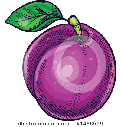 Plums Clipart #1466509 by Vector Tradition SM