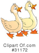 Goose Clipart #31172 by Alex Bannykh
