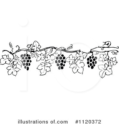 Grapes Clipart #1120372 by Prawny Vintage