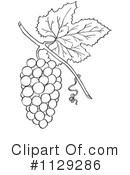 Royalty-Free (RF) Grapes Clipart Illustration #1129286