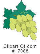 Royalty-Free (RF) Grapes Clipart Illustration #17088