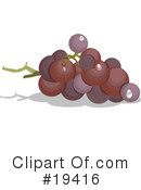 Grapes Clipart #19416 by Vitmary Rodriguez