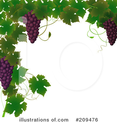 Grape Vine Clipart #209476 by elaineitalia
