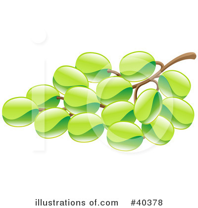 Grapes Clipart #40378 by AtStockIllustration