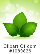 Green Leaves Clipart #1089836 by elaineitalia