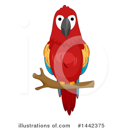 Parrot Clipart #1442375 by BNP Design Studio