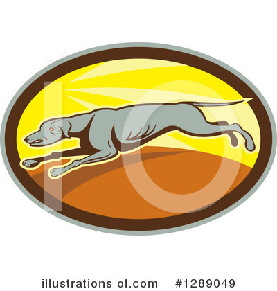 Greyhound Clipart #1289049 by patrimonio
