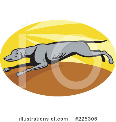 Greyhound Clipart #225306 by patrimonio