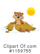 Groundhog Clipart #1159755