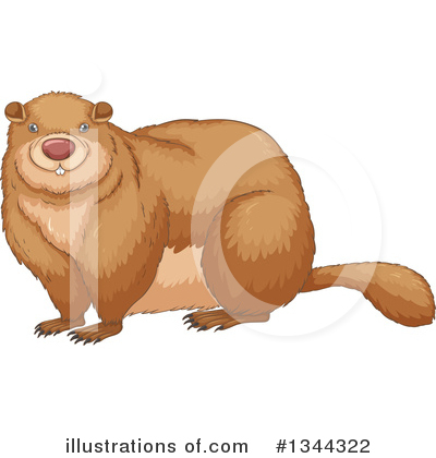 Groundhog Clipart #1344322 by Graphics RF