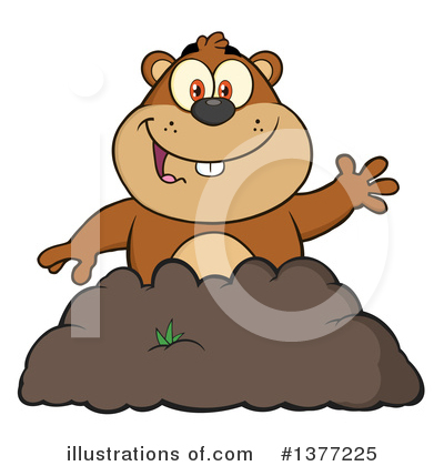 Groundhog Clipart #1377225 by Hit Toon