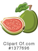 Guava Clipart #1377696 by Vector Tradition SM