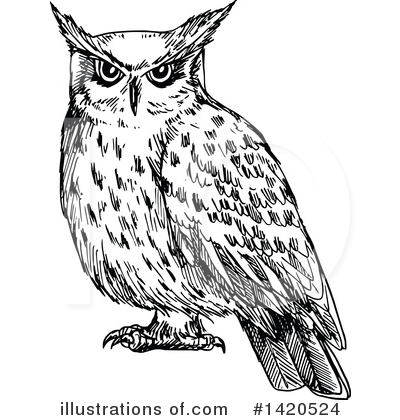 Owl Clipart #1420524 by Vector Tradition SM