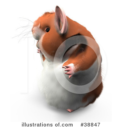 Hamster Clipart #38847 by Leo Blanchette