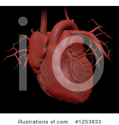 Human Heart Clipart #1253833 by Mopic