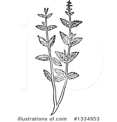 Herb Clipart #1334953 by Picsburg