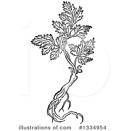 Herb Clipart #1334954 by Picsburg