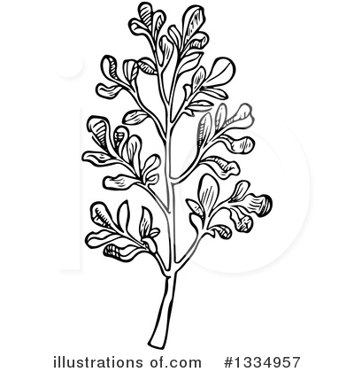 Herb Clipart #1334957 by Picsburg