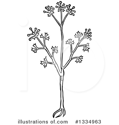 Herb Clipart #1334963 by Picsburg