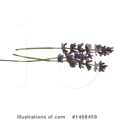 Lavender Clipart #1468459 by Vector Tradition SM