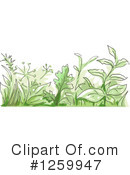 Herbs Clipart #1259947 by BNP Design Studio