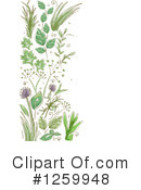 Herbs Clipart #1259948 by BNP Design Studio