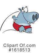 Hippo Clipart #1618513 by toonaday