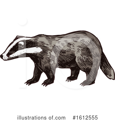 Royalty-Free (RF) Honey Badger Clipart Illustration by Vector Tradition SM - Stock Sample #1612555