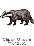 Honey Badger Clipart #1612555 by Vector Tradition SM