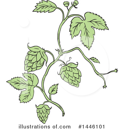 Hops Clipart #1446101 by patrimonio