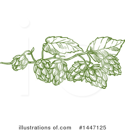 Hops Clipart #1447125 by Vector Tradition SM