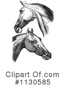 Horse Anatomy Clipart #1130585 by Picsburg