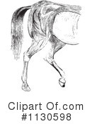 Royalty-Free (RF) Horse Anatomy Clipart Illustration #1130598