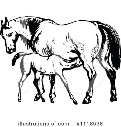 Horse Clipart #1118538 by Prawny Vintage