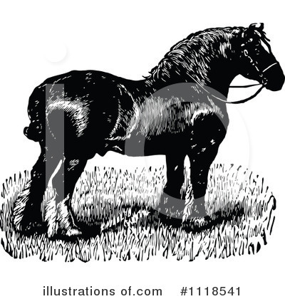 Horse Clipart #1118541 by Prawny Vintage