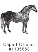 Horse Clipart #1135863 by Picsburg